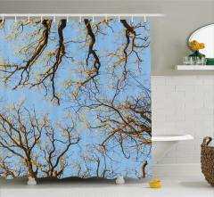 Dekoratif Ağaçlar Manzaralı Duş Perdesi Sarı Mavi
