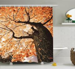 Sonbahar ve Ağaç Temalı Duş Perdesi Şık Kahverengi