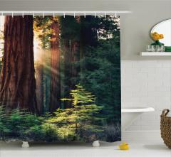 Ormanda Büyüleyici Sabah Manzaralı Duş Perdesi Yeşil