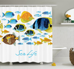 Deniz Yaşamı Temalı Duş Perdesi Rengarenk Balıklar