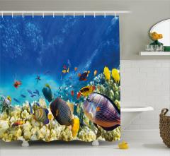 Okyanus Altı Yaşam Temalı Duş Perdesi Balıklar Mavi