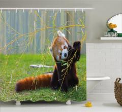 Sevimli Panda Temalı Duş Perdesi Kahverengi Yeşil