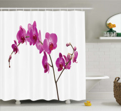 Mor Orkide Desenli Duş Perdesi Beyaz Şık Tasarım