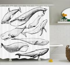 Siyah Beyaz Balina Desenli Duş Perdesi Dekoratif