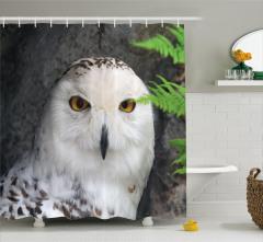 Kuş Portreli Duş Perdesi Beyaz Şık Tasarım Doğa