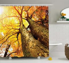 Sonbahar Temalı Duş Perdesi Sarı Kahverengi Ağaç