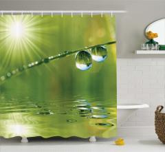 Su Damlası ve Güneş Temalı Duş Perdesi Yeşil Şık