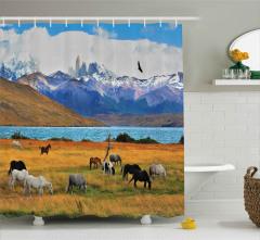 Vahşi At Sürüsü Otlakta Duş Perdesi Dağ ve Göl