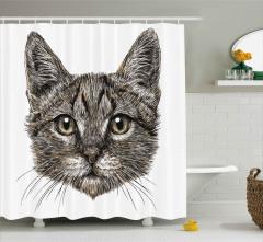 Bir Tekir Kedinin Portresi Duş Perdesi Dekoratif