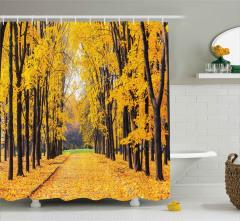Sonbaharda Yaprak Döken Ağaçlar Duş Perdesi Sarı