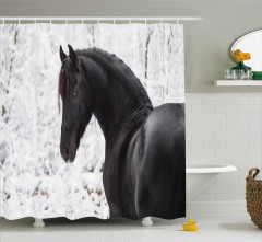 Siyah At Portresi Duş Perdesi Kar Kış Orman Doğa
