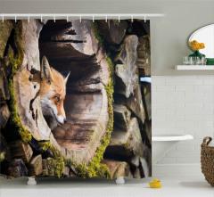 Ormandaki Tilkinin Portresi Duş Perdesi Yaban Hayatı