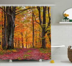 Ormanda Sonbahar Sabahı Duş Perdesi Yaprak Ağaç Doğa