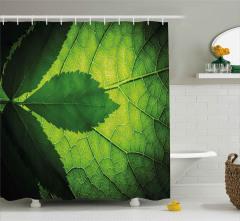 Yaprağın Arkası ve Önü Duş Perdesi Yeşil Doğa