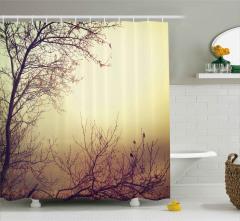Yapraklarını Dökmüş Ağaçlar Duş Perdesi Sonbahar