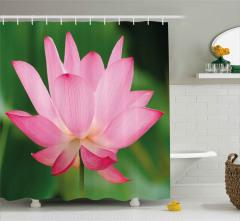 Makro Pembe Çiçek Duş Perdesi Yeşil Doğa Şık