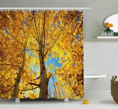 Sararmış Yapraklı Ağaç Duş Perdesi Sonbahar Şık