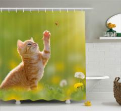 Uğur Böceğine Uzanan Pati Duş Perdesi Tatlı Kedicik