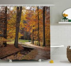 Sonbaharda Ormanda Gezinti Duş Perdesi Yapraklar