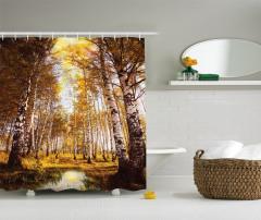 Sonbaharın Renkleri Temalı Duş Perdesi Ağaçlar