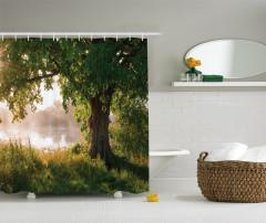 Yalnız Ağaç Manzaralı Duş Perdesi Doğada Huzur