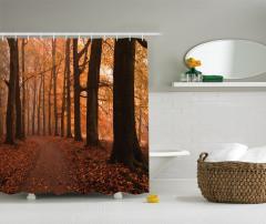 Doğada Sonbahar Temalı Duş Perdesi Yaprak Ağaç