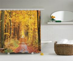 Sonbahar Yürüyüşü Temalı Duş Perdesi Yaprak Ağaç