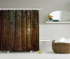 Huzurlu Orman Temalı Duş Perdesi Ağaç ve Doğa