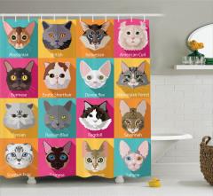 Rengarenk Kedi Türleri Kolajlı Duş Perdesi Tasarım