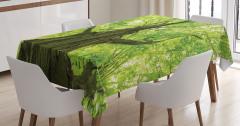 Doğada Huzur Temalı Masa Örtüsü Ağaç Yeşil Yapraklar
