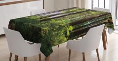 Doğada Huzur Temalı Masa Örtüsü Ağaç Yeşil Orman