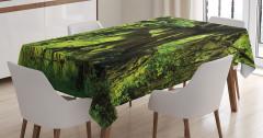 Yağmur Ormanı Temalı Masa Örtüsü Doğa Ağaç