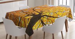 Sonbahar Temalı Masa Örtüsü Ağaç Sarı Yaprak Doğa