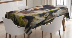 Ormandaki Tilkinin Portresi Masa Örtüsü Yaban Hayatı