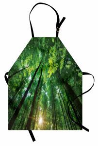 Vibrierende Sonnenstrahlen und Bäume Kochschürze
