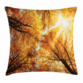 Herbst Sunbeams Wald Kissenbezug