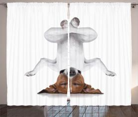 Hund auf den Kopf entspannen Vorhang