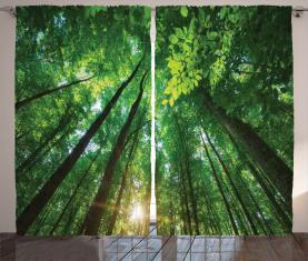 Vibrierende Sonnenstrahlen und Bäume Vorhang