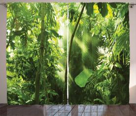 Sommer Tropischer Pflanzen Dschungel Vorhang