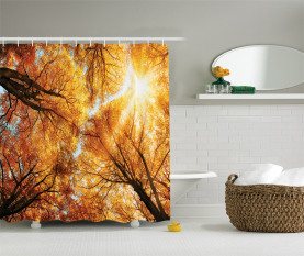 Herbst Sunbeams Wald Duschvorhang