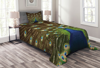 Peacock with Feathers Bedspread Set