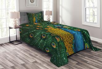 Portrait Of The Peacock Bedspread Set