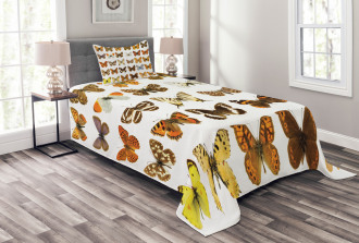 Butterfly Miracle Wing Bedspread Set