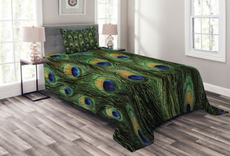 Exotic Animal Feathers Bedspread Set