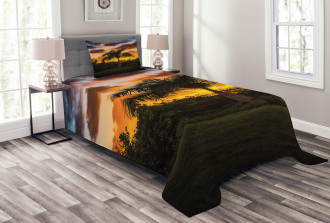Exotic Tree at Sunset Bedspread Set