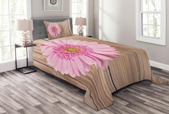 Pink Gerber on Wooden Bedspread Set