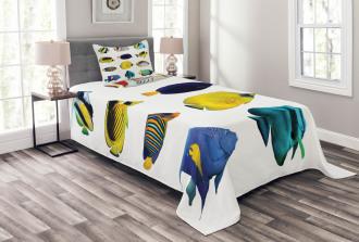 Collage of Sea Animals Bedspread Set