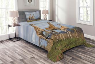 African Giraffe Family Bedspread Set