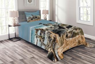 Driftwood Shore Seagull Bedspread Set