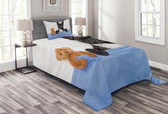 French Bulldog with Bear Bedspread Set